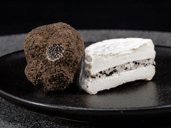 trufas frescas negras producto gourmet